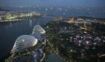 Singapore tính chi hàng tỷ USD để tự cứu trong ảnh hưởng chiến tranh thương mại