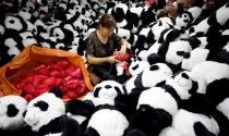 Sản xuất toàn cầu đồng loạt suy giảm do thương chiến Mỹ – Trung Quốc