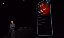 iOS 13 đã sẵn sàng nhưng bạn đừng vội cập nhật