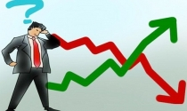 """6 sai lầm """"chết người"""" cần tránh trên thị trường chứng khoán (Bài 2)"""
