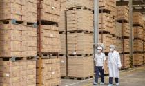 Gói hỗ trợ 62.000 tỷ đồng: Doanh nghiệp, hộ kinh doanh nào được nhận?