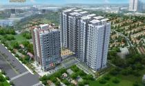 SunView 3 Apartment: Căn hộ an cư