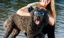Trở thành triệu phú nhờ bán kính râm cho chó