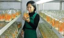"""Cô gái 8x kiếm doanh thu khủng từ Đông trùng Hạ thảo """"Made in Vietnam"""""""