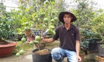 Làm giàu bằng trồng cây kiểng dược liệu