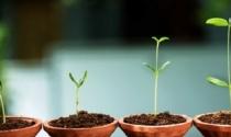 Kỹ năng và tố chất để khởi nghiệp thành công