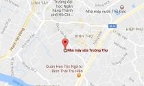 TP.HCM: Chuyển khu đất Nhà máy sữa Trường Thọ thành nhà ở, công viên