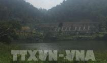 Sai sót quản lý đất rừng ở Minh Trí (Sóc Sơn): Sẽ xử lý tập thể, cá nhân vi phạm