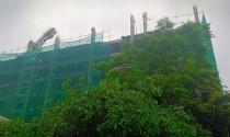 """Sự thật về việc """"xây dựng không phép"""" tại Dự án nhà ở xã hội - Chung cư Đại Nam"""