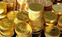 Điểm tin sáng: USD tăng trở lại kéo vàng giảm mạnh