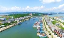 Quảng Ninh chỉ đạo rà soát toàn bộ quy hoạch Đảo Tuần Châu