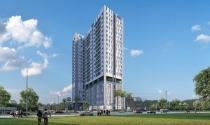 Công bố dự án D-Vela quận 7