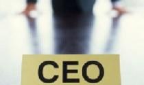 CEO tài chính, thu nhập bao nhiêu?