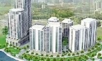 Đại gia Thủ đô kéo về đất Cảng đầu tư bất động sản