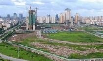 Hà Đông đấu giá đất, mức sàn thấp nhất 10 triệu đồng