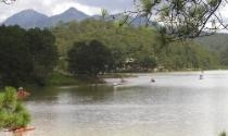 Đà Lạt: Lập dự án thuê đất rừng để… sang nhượng