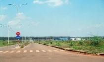 Bình Phước: 4 doanh nghiệp bị thu hồi đất bỏ hoang