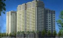 Meco JSC thành lập Công ty Cổ phần bất động sản Meco