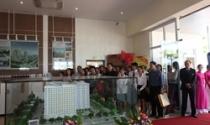 Thêm kênh phân phối các dự án lớn ở Vũng Tàu