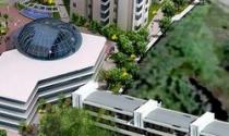 Quý 1/2011: LNST của Dream House giảm 75,31% so với cùng kỳ