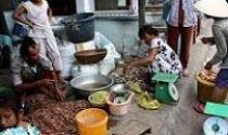 """TP.Hồ Chí Minh: Đảo Thạnh An bị """"treo"""" đến bao giờ?"""
