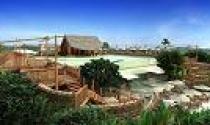 Ninh Vân Bay: Lỗ hơn 29 tỷ đồng trong quý II