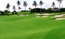 Quy hoạch sân golf: Hiểm hoạ đằng sau những con số