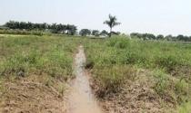 Đất bỏ hoang nhưng dân khát đất