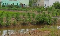Tìm lối ra cho tiền sử dụng đất vượt hạn mức