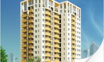Thu Duc House đầu tư 208 tỷ đồng vào bất động sản