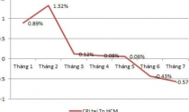CPI tại Tp.HCM có tháng 7 giảm mạnh nhất từ 2003