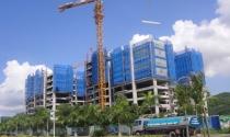 Mở bán GreenBay Towers