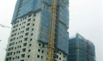 Cất nóc tòa CT2 dự án Nam Đô Complex