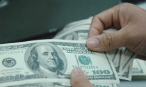 Kiều hối sẽ đạt 10 tỉ USD
