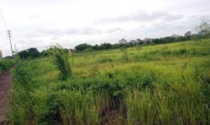 Năm 2012, Hà Nội thu 700 tỷ đồng tiền đấu giá đất