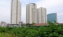 Ông Trần Trọng Tuấn, Giám đốc Sở Xây dựng TP.Hồ Chí Minh: Không thể để nhà ở tồn kho