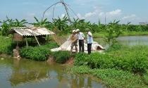 Khó khăn trong điều chỉnh thời hạn sử dụng đất nông nghiệp