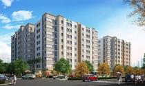 CEO Group động thổ dự án nhà ở xã hội với quy mô 500 căn hộ