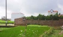 """Xây dựng trái phép trên đất nông nghiệp tại xã An Thượng (Hoài Đức): Sai phạm tràn lan, xử lý trên """"giấy"""""""