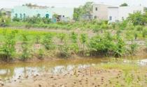 Sẽ cho dân sở tại xây nhà trên đất nông nghiệp