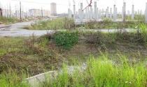 """Chậm thu hồi đất """"vàng"""" bỏ hoang, trường học, bệnh viện vẫn thiếu"""