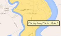 TP.HCM: Duyệt quy hoạch 1/2000 Khu I - Khu dân cư nhà vườn du lịch sinh thái phường Long Phước