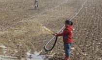 Trung Quốc thử nghiệm cải cách đất đai