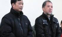 """Hai bị cáo """"lừa bán đất dự án"""" bị đề nghị mức án gần 40 năm tù"""
