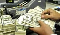 Kiều hối năm 2013 đạt 11 tỷ USD