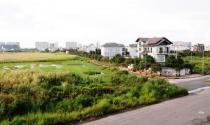 """Trúng """"lô đất vàng"""", công ty Xuân Lan vẫn chậm nộp tiền đất?"""