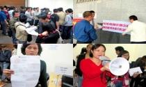 Chuyện chỉ có ở Việt Nam: Thuận mua vừa bán xong… kiện!