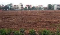 Hà Nội: Dự kiến thu 1.500 tỷ đồng từ 42,65ha đất đấu giá