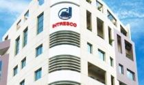 Cổ phiếu của Intresco vào diện cảnh báo