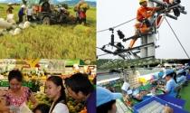 Cải cách kinh tế chậm chạp khiến người tiêu dùng thắt chặt chi tiêu
